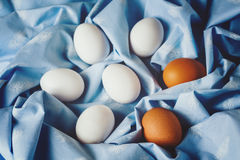 Easter eggs on blue textile draped background Stock Images
