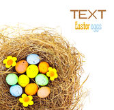 Easter eggs border Royalty Free Stock Image