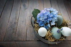 Easter eggs in a bowl with straw and blue hydrangeas Royalty Free Stock Image