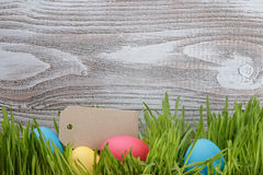 Easter eggs in box with fresh grass over wood background. Copy space Stock Images