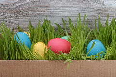 Easter eggs in box with fresh grass over wood background. Copy space Royalty Free Stock Photos