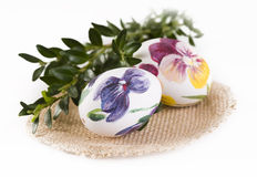 Easter eggs and boxwood Royalty Free Stock Photo