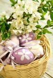 Easter eggs and branch with flowers Stock Photos