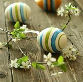 Easter eggs and branch with flowers on wooden Royalty Free Stock Images