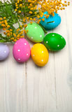 Easter eggs with branch of mimosa flowers Royalty Free Stock Photo