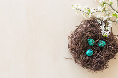 Easter eggs in a branch nest Royalty Free Stock Images