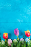Easter eggs on bright blue background. Easter eggs and tulips in grass on bright blue background Royalty Free Stock Image