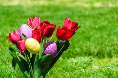 Easter eggs and bright red tulips on the grass background Royalty Free Stock Photography