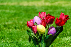 Easter eggs and bright red tulips on the grass background Stock Photography