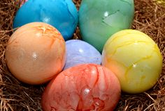 Multicolored Colored Easter Eggs Sitting on a Nest Stock Images