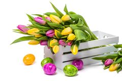 Easter eggs and a bunch of colorful tulips in a white wooden box on a white background stock photo