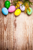 Easter eggs with bunch mimosa copyspace Royalty Free Stock Images