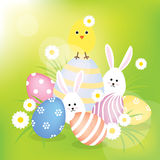 Easter eggs, bunnies and chick Stock Image