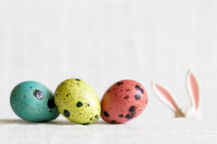 Easter eggs and bunny ears abstract background Stock Photography