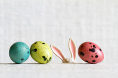Easter eggs and bunny ears abstract background Royalty Free Stock Photos