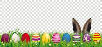 Easter Eggs Bunny Ears Grass Transparent Header. White flowers in grass with colored easter eggs and hare ears on the checked background Royalty Free Stock Image