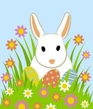 Easter eggs and bunny. In grass on blue background Stock Photo