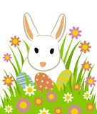 Easter eggs and bunny. In grass isolated on white Royalty Free Stock Photos