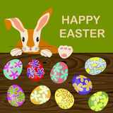 Easter eggs and bunny Stock Photos