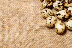 Easter  eggs on burlap fabric texture Stock Photos
