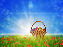 Basket of eggs on poppy field. Easter eggs are in busket on a sunny poppy field background Stock Photo