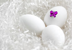 Easter Eggs and butterfly Stock Photography
