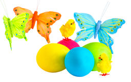 Easter eggs, and  butterfly on a white background Royalty Free Stock Images
