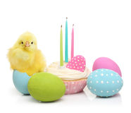 Easter eggs, cake and cute little chicken Royalty Free Stock Photo