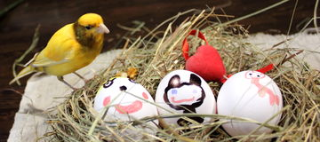 Easter eggs and a canary bird Royalty Free Stock Photos