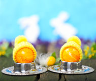 Easter eggs with cap, egg warmer Stock Images