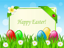 Easter eggs and card in the grass. Among the daisies Stock Images
