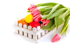 Easter eggs card with spring flowers on white background Royalty Free Stock Photo