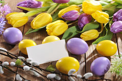 Easter eggs with card Stock Images