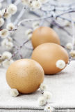 Easter eggs and catkins Royalty Free Stock Photography