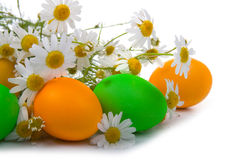 Easter eggs and chamomile Royalty Free Stock Photography