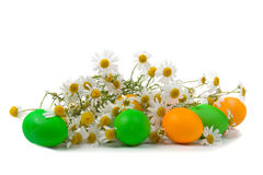 Easter eggs and chamomiles Royalty Free Stock Image