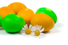 Easter eggs and chamomiles Royalty Free Stock Photos
