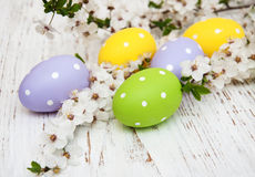Easter eggs and cherries blossom Stock Photography