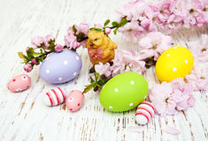 Easter eggs and cherries blossom Royalty Free Stock Images