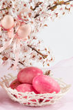 Easter eggs and cherry blossom flowers Royalty Free Stock Images