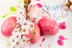 Easter eggs and cherry blossom flowers Royalty Free Stock Photography