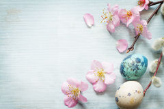 Easter eggs and cherry blossom retro blue background Royalty Free Stock Images