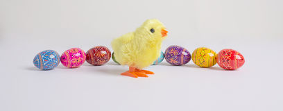 Easter Eggs & Chick Stock Photo