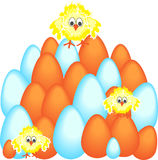 Easter Eggs with Chicken Royalty Free Stock Image