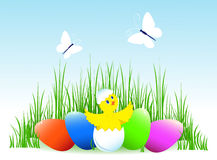 Easter eggs and chicken. Multi-coloured Easter eggs and chicken in a grass. Butterflies fly. On blue. Vector illustration Royalty Free Stock Photo