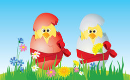 Easter eggs and  chicken. On the lawn Stock Photos