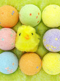 Easter eggs and a chicken in an eggs case Royalty Free Stock Photography