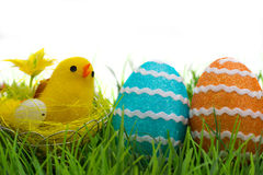 Easter eggs and chicken Royalty Free Stock Photography