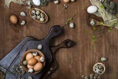 Easter eggs in chicken and quail. With willow twigs on wooden background, top view Stock Images