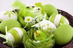 Easter eggs and chicken on a wicker basket Royalty Free Stock Photos